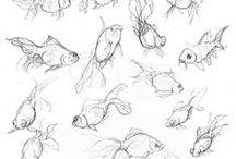 Kresba - fauna