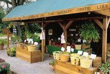 Grocery/Farmstand Inspo / by Lizzy S