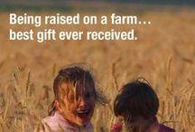 Farm Life / Farm Animal Stuff / by Ashley Bland