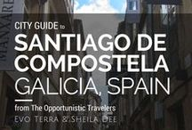 Santiago de Compostela, Galicia, Spain - City Guide / A collection of the things we did, saw, ate, and drank while in Santiago.  / by The Opportunistic Travelers