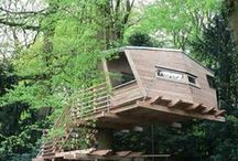 Trees at Home / Tree houses, furniture, art, and other ways trees inspire home decor.