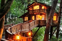 my barking home | Treehouses / have always LOVED tree houses and there are amazing ones all over the world... / by Dorette