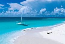 Beaches / Love everything about the beach...sound of the ocean roar, white sand between my toes and sparkling turquoise water!  / by Lou Ann Donovan Live-Young
