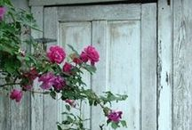 Charming old doors <3