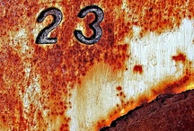 """""""23"""" / by Tim Taylor"""