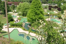 Gaithersburg Parks / The parks are abundant in Gaithersburg.  From fishing and boating, to in-line skating and ball playing, Gaithersburg has it all.  Pick a park and enjoy all that it can offer.