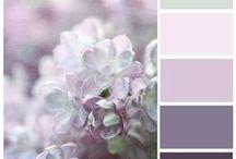 Graphics&Colors