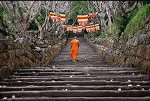 Back to the roots - Sri Lanka / The beautiful island I grew up on
