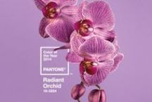 "Radiant Orchid: 2014 Pantone Color of the Year / Radiant Orchid is described as ""an enchanting harmony of fuchsia, purple and pink undertones"" that ""inspires confidence and emanates great joy, love and health."""