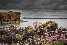 Scotland / Aurora Expeditions travel to the Wild Scotland. Join us on our next expedition to Scotland.