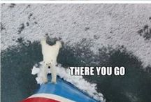 Travel Humour / Anything funny related to all sorts of travel.