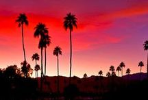 Travel: Palm Springs Trip / Photography and travel ideas when visiting Palm Spring California