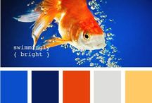 Design - Colour Palettes / Use these graphics to generate colour palettes.