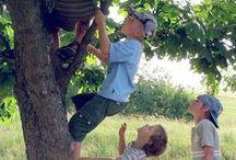 Raising Boys / by Janie Schaafsma