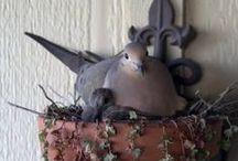 Birds and Flowers / by Janie Schaafsma