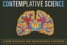Buddhism / Hinduism
