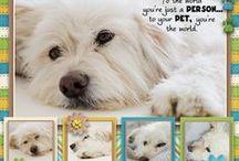 Pet Pages