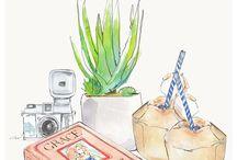 Illustrations / Drawings