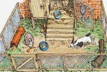 Konijnenhok //Bunny hutch / Ideetjes en weetjes voor een nog te bedenken konijnenhuis