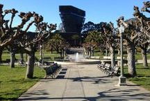 de Young Museum / by Golden Gate Park