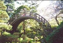 Japanese Tea Garden / by Golden Gate Park