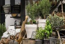 "Shops and Interior Idea""s..."
