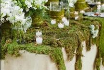 moss and garden gates