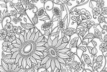 Art - Adult Coloring