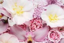Florals / Beautiful flowers are always inspiring, so we're pinning the prettiest hues and arrangements!
