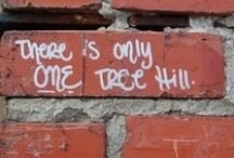 One Tree Hill  / One Tree Hill