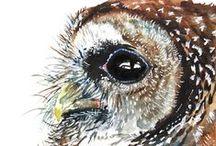 +BIRDS-OWLS / by Rita Gjefle