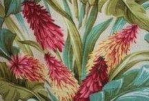 do Desenho Botânico