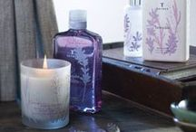 Candles & Fragrances / Arouse your senses each day with these candles and fragrances to decorate and scent your home
