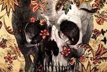Skulls / All the skullies
