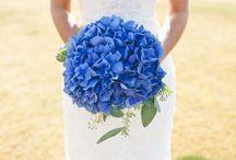 Wedding / by Jenna Bolton