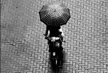 photography tips 'n' tricks / by skye zambrana