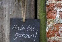 GARDENS / All things I love in the garden