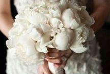 Pure White Wedding / All time classic!