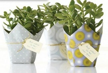 Un-Contained / Fun and stylish ideas for non-traditional, non-junky containers for plants. / by Susan Cohan