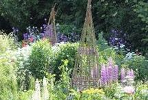Colonial Park Perennial Garden / A complete re-design for a perennial garden in a public park.