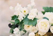 weddings / by Natalie Bjordal
