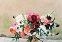 florals / by Natalie Bjordal