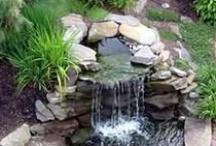 Backyard water features / by Elizabeth Astin