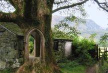 Irresistible Ireland / by Elizabeth Astin