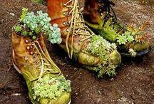 Dream: Home Garden / Inspiration for my dream home garden.