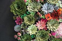 Greens-Plants++ / by Joyce Brown