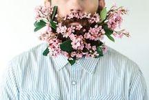Petites fleurs // Flowers / Flower / Garden / Bouquet / Nature
