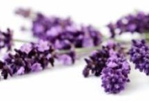 Natural Remedies / by Julia McBride