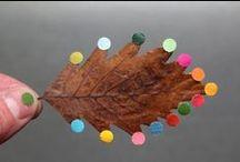 Petites saisons : l'automne // Fall / Autumn / Fall / Halloween