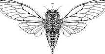 Only Cicada - Print - Mahlstedt Gallery N.Y. - by J.E.Zoombies